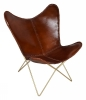 Bytterfly Easy Chair, brown/brass